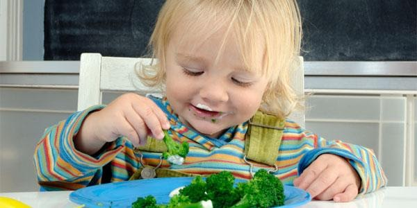 Bé 2 tuổi biếng ăn