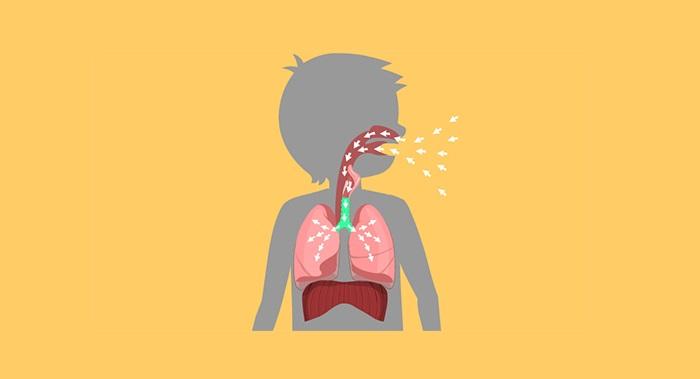 Hệ hô hấp còn khá yếu, chưa hoàn thiện