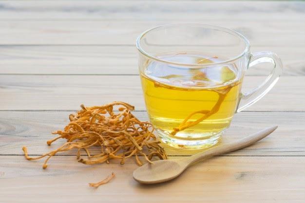 Một tách trà đông trùng mỗi ngày sẽ rất tốt cho sức khỏe