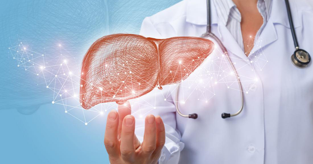 Tầm quan trọng của gan với cơ thể