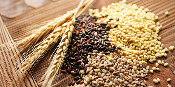 Sử dụng ngũ cốc tốt cho gan