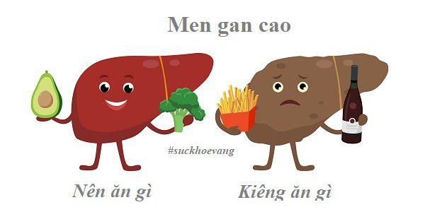 Men Gan Cao nên Ăn Gì và Kiêng Ăn Gì để Hạ Men Gan?