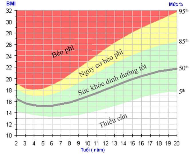 Biểu đồ tăng trưởng tỷ lệ phần trăm BMI theo tuổi