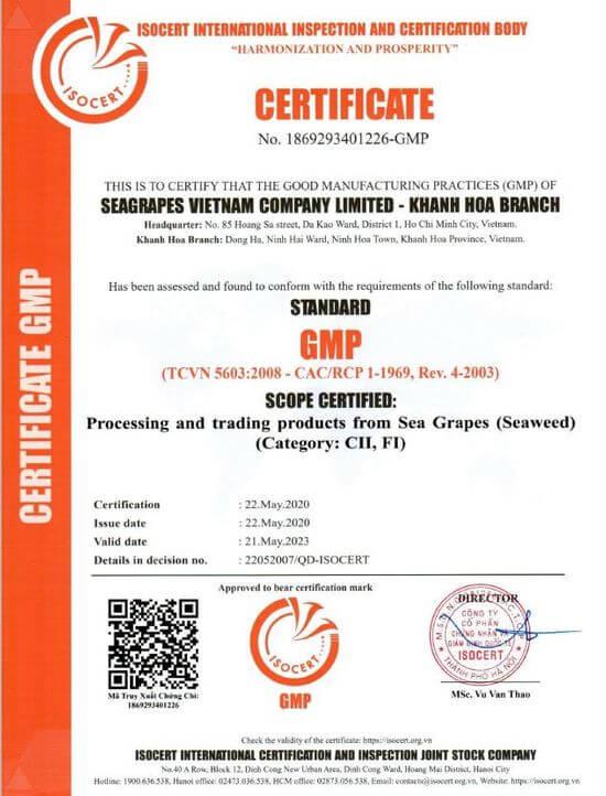 Chứng nhận GMP số 186293401226.