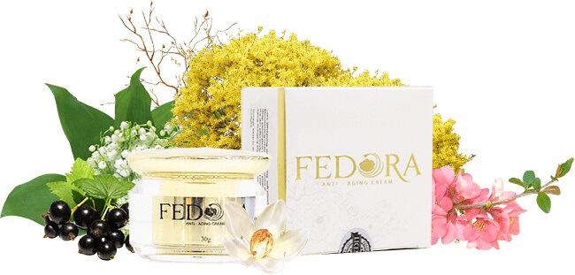 Thành phần của kem chống lão hóa Fedora.