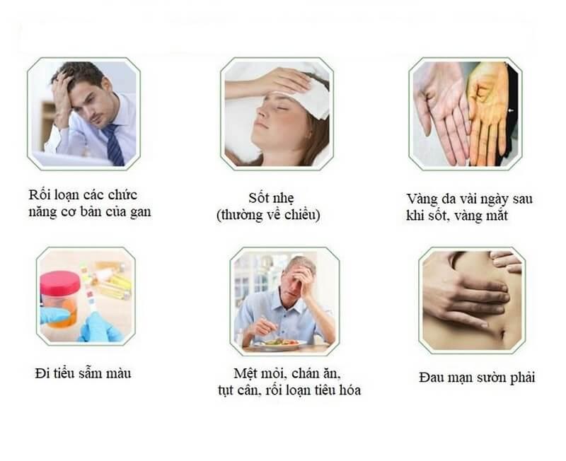Các triệu chứng của bệnh gan nhiễm mỡ