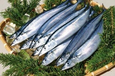 Cá thu giàu omega 3