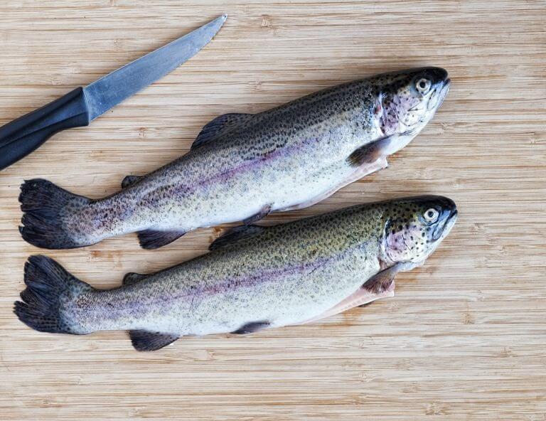 Cá Hồi Cầu Vồng giàu omega 3
