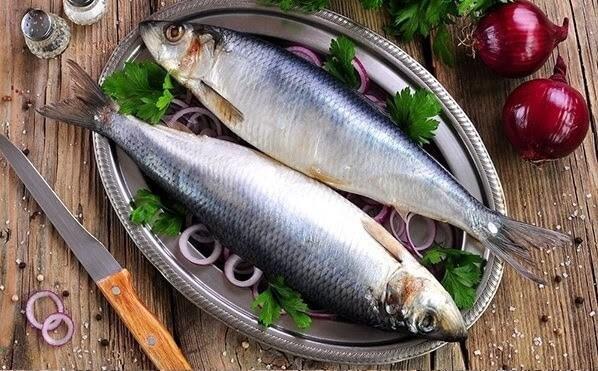 Cá Trích giàu omega 3