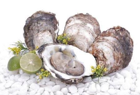 Chiết xuất tinh chất hàu biển