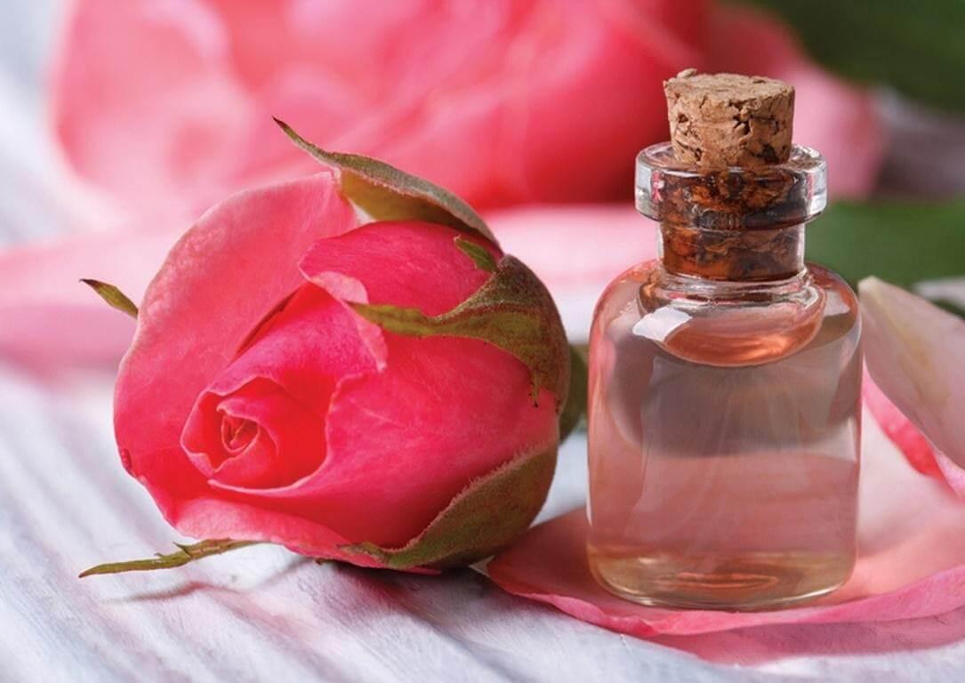 Nước hoa hồng là gì?