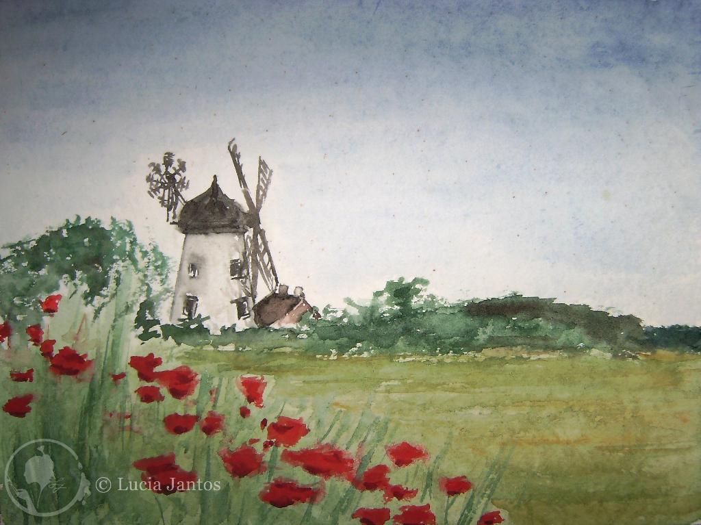 Die Mohnblumenmühle  - Aquarell auf Papier Din A4