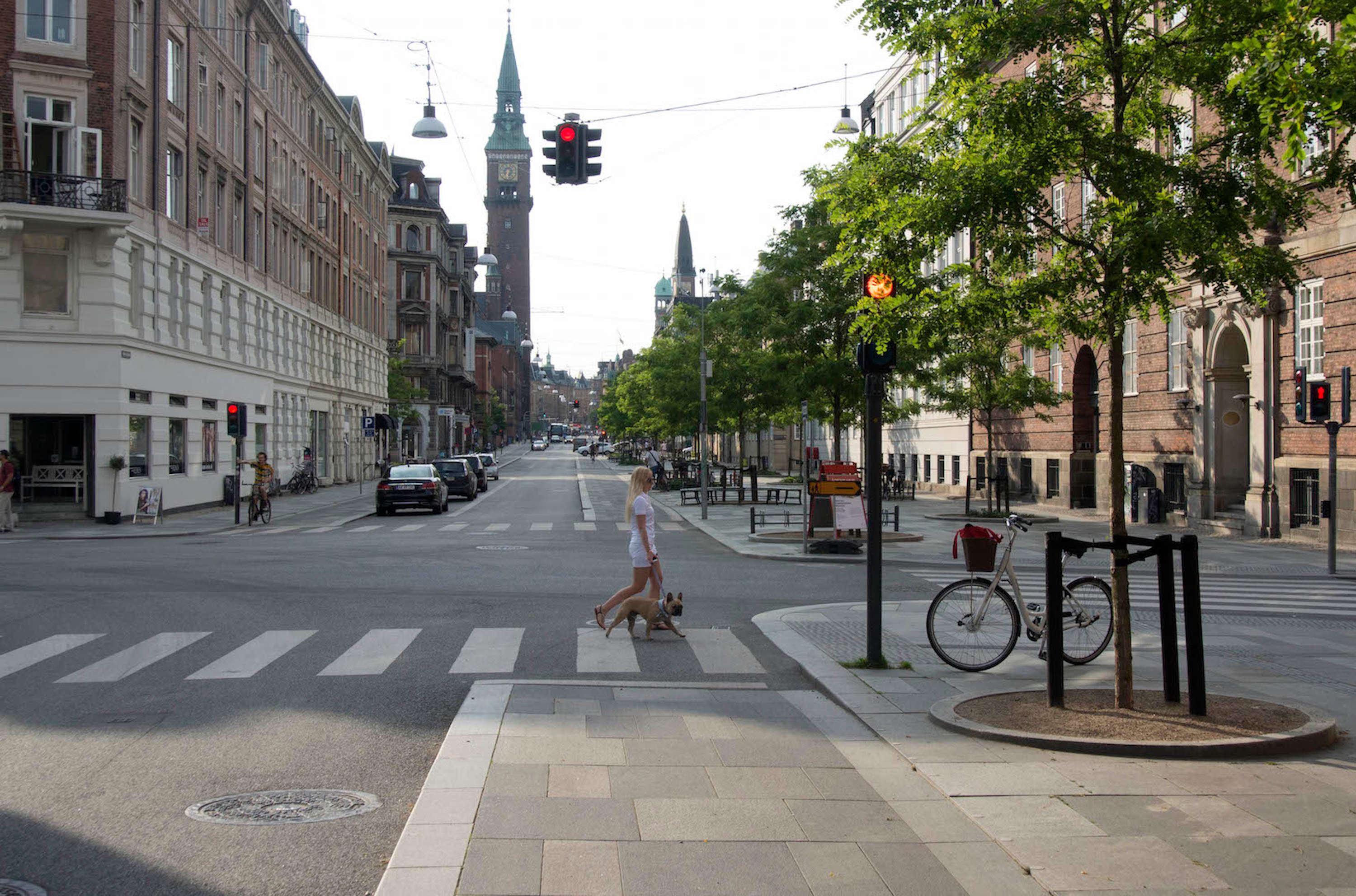 A dog-walker crosses Wott Street in Copenhagen, which is full of wide pavements and protected bike lanes.