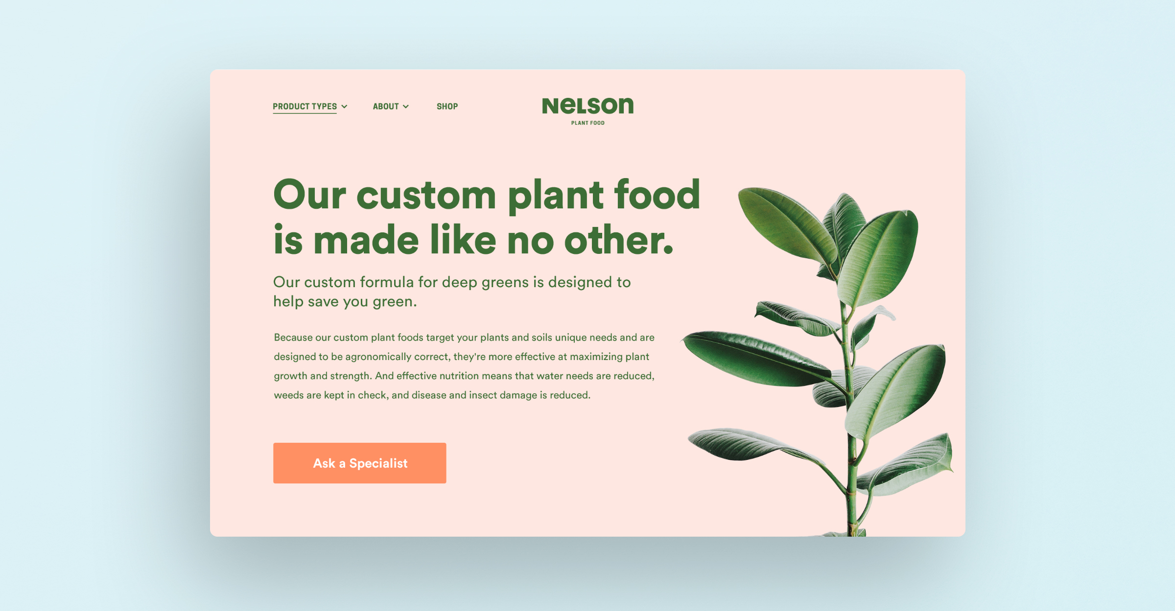 Nelson Plant Food subpage website mockup