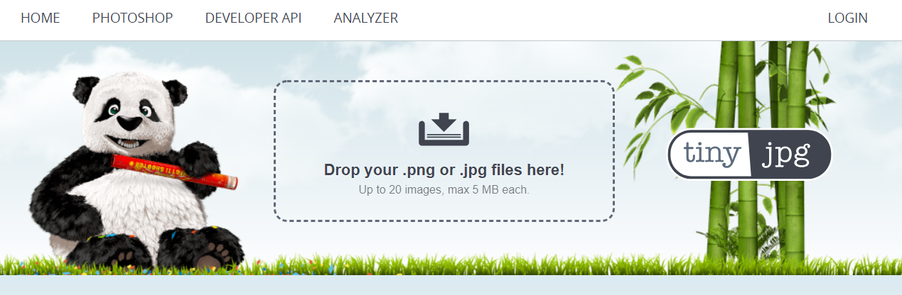TinyJPG.com