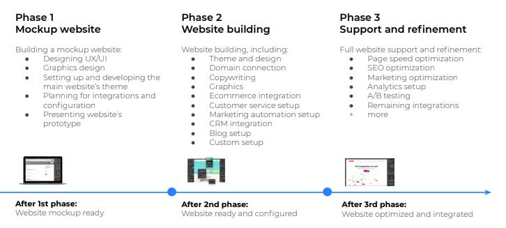 Website developer project schedule