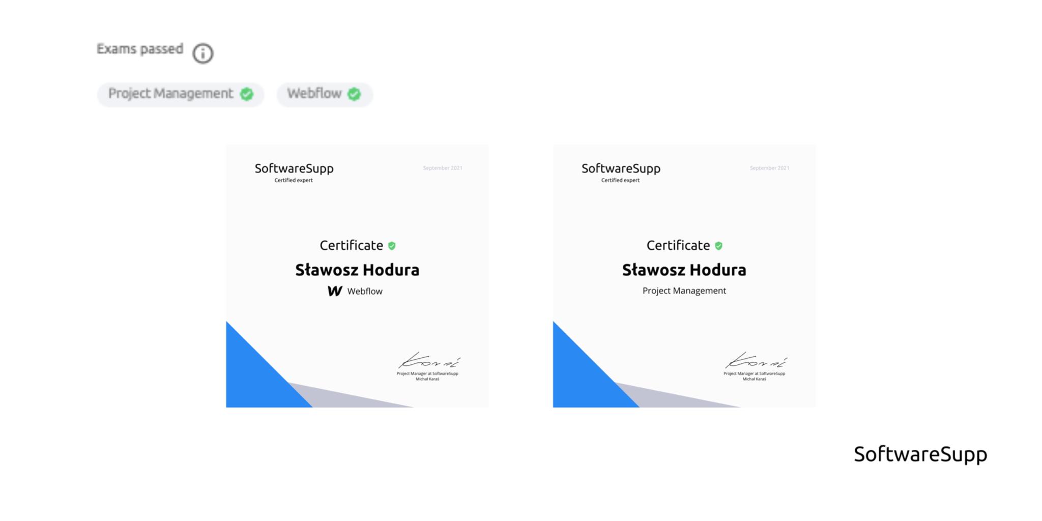 Internal certification for website developers