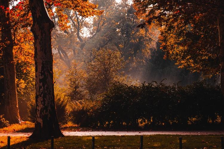 parc zagreb