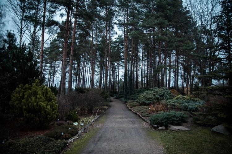 vilnius parc