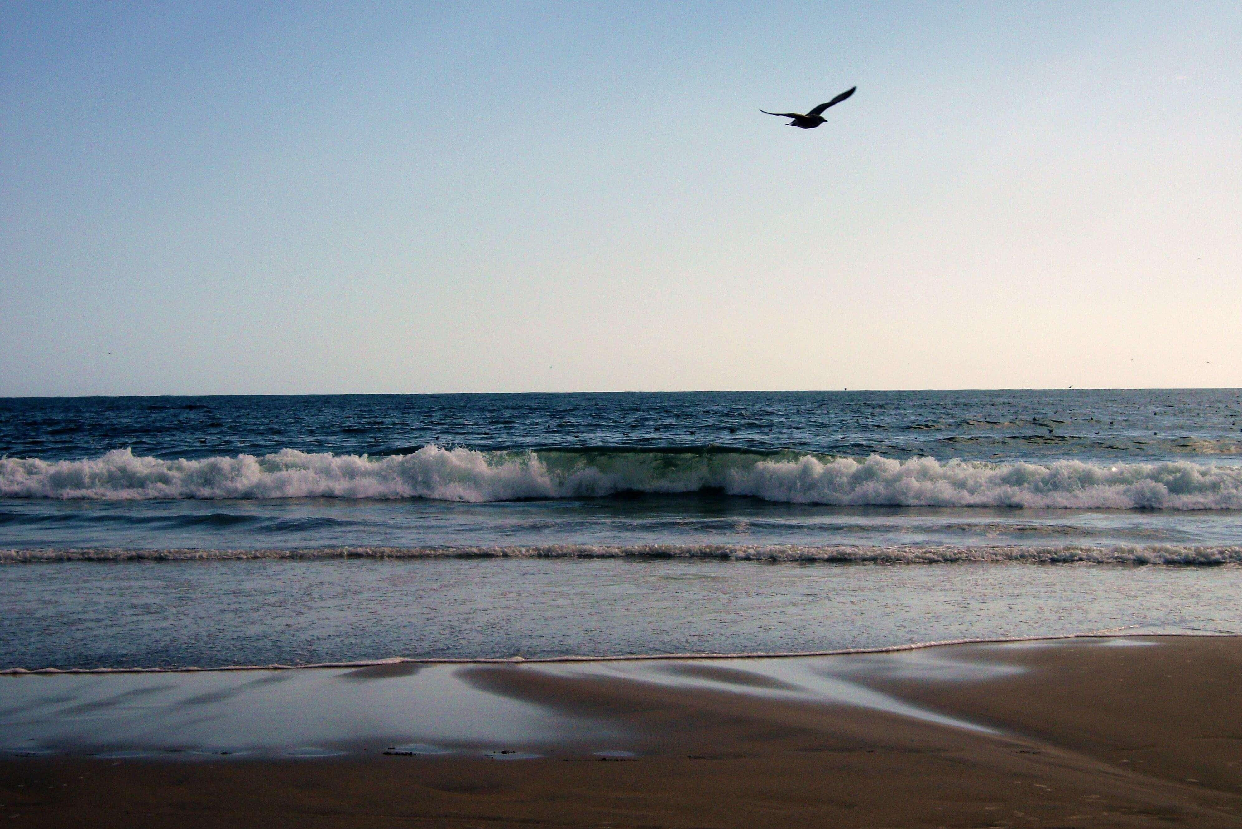 plages autour de porto matosinhos