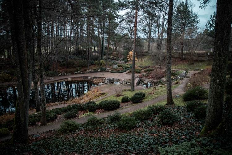 Parc proche de Vilnius