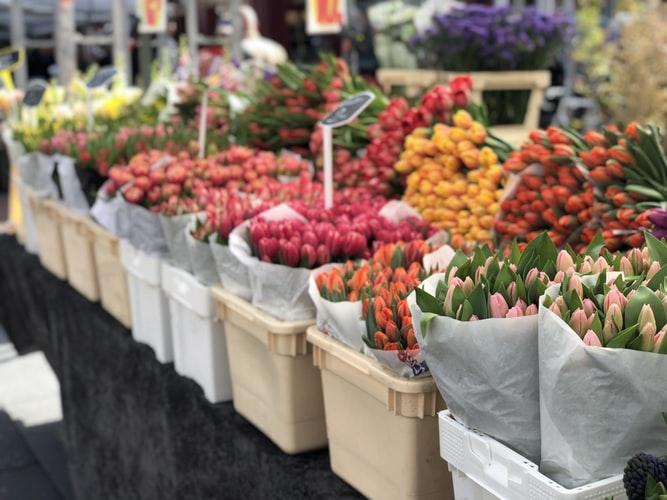 Marché aux fleurs sur les quais