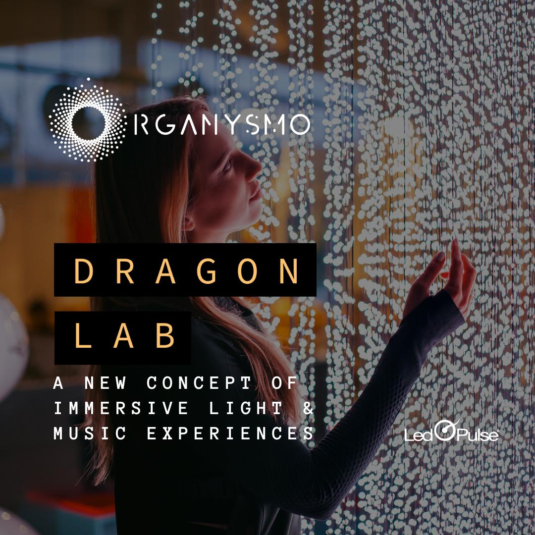 Dragon Laboratory and workshops  ORGANYSMO Ibiza