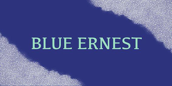 Blue Ernest Banner