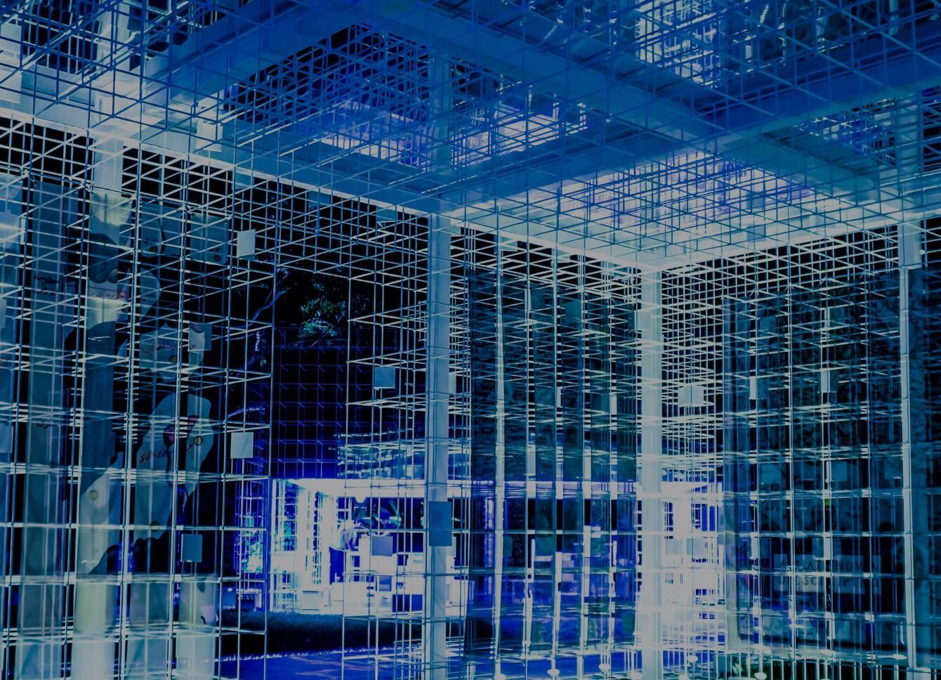 Web hosting decision