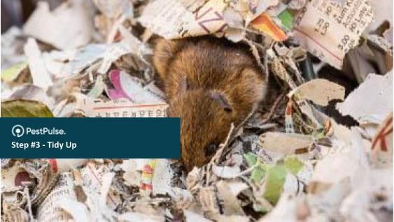 Removing anything a rodent could use for nesting