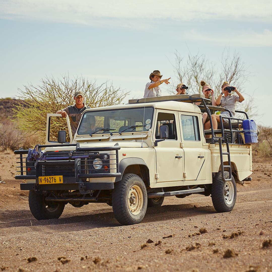 Gamedrive on Boscia/Namibia