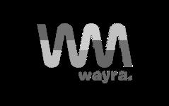 Valerann Partner Wayra logo