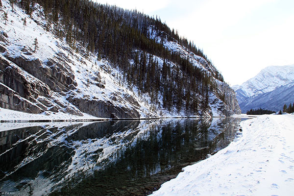 whitemans pan landscape