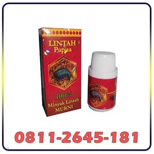 Jual Lintah Oil Asli Papua Di Mataram
