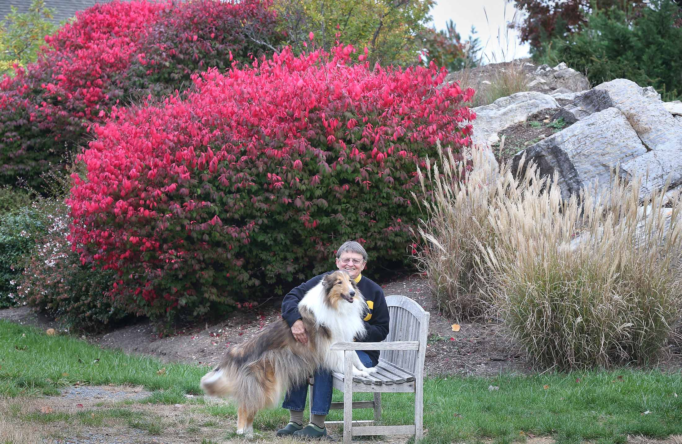 Health service woman and dog in garden