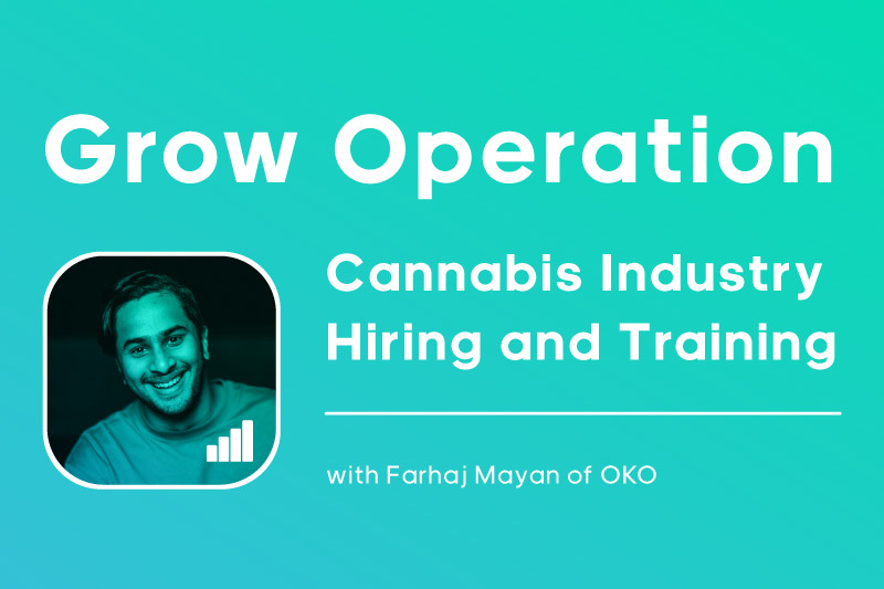 Farhaj Mayan of OKO Sees Hiring and Training as the Biggest Problem to Tackle in the Cannabis Industry