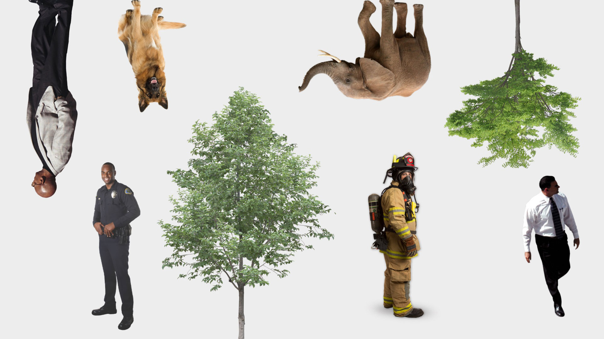 1000 Free Cutouts - People, Cars, Trees, Animals, and More