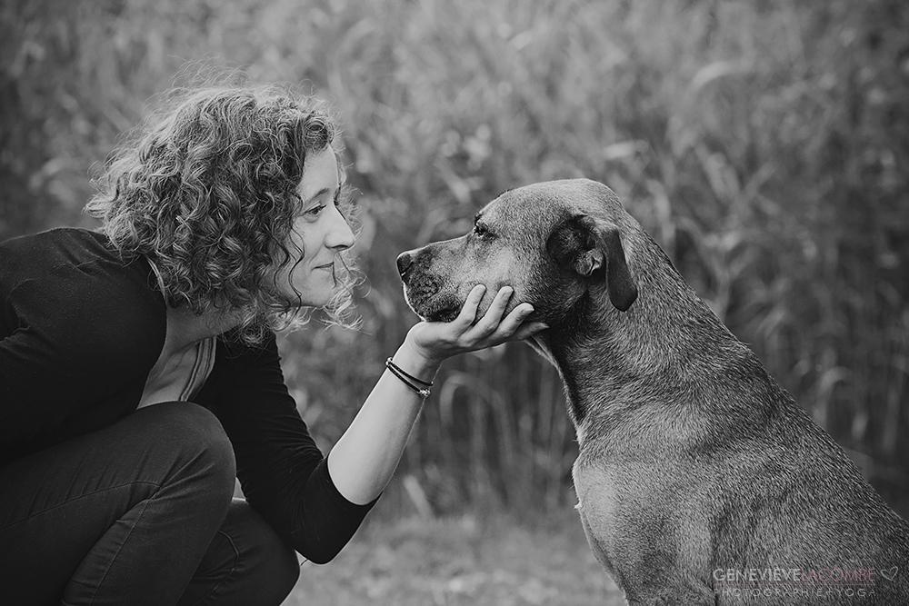 Grand chien avec son humain