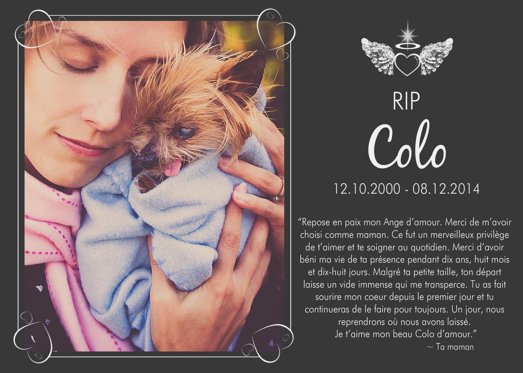 Carte de décès pour un chien aimé