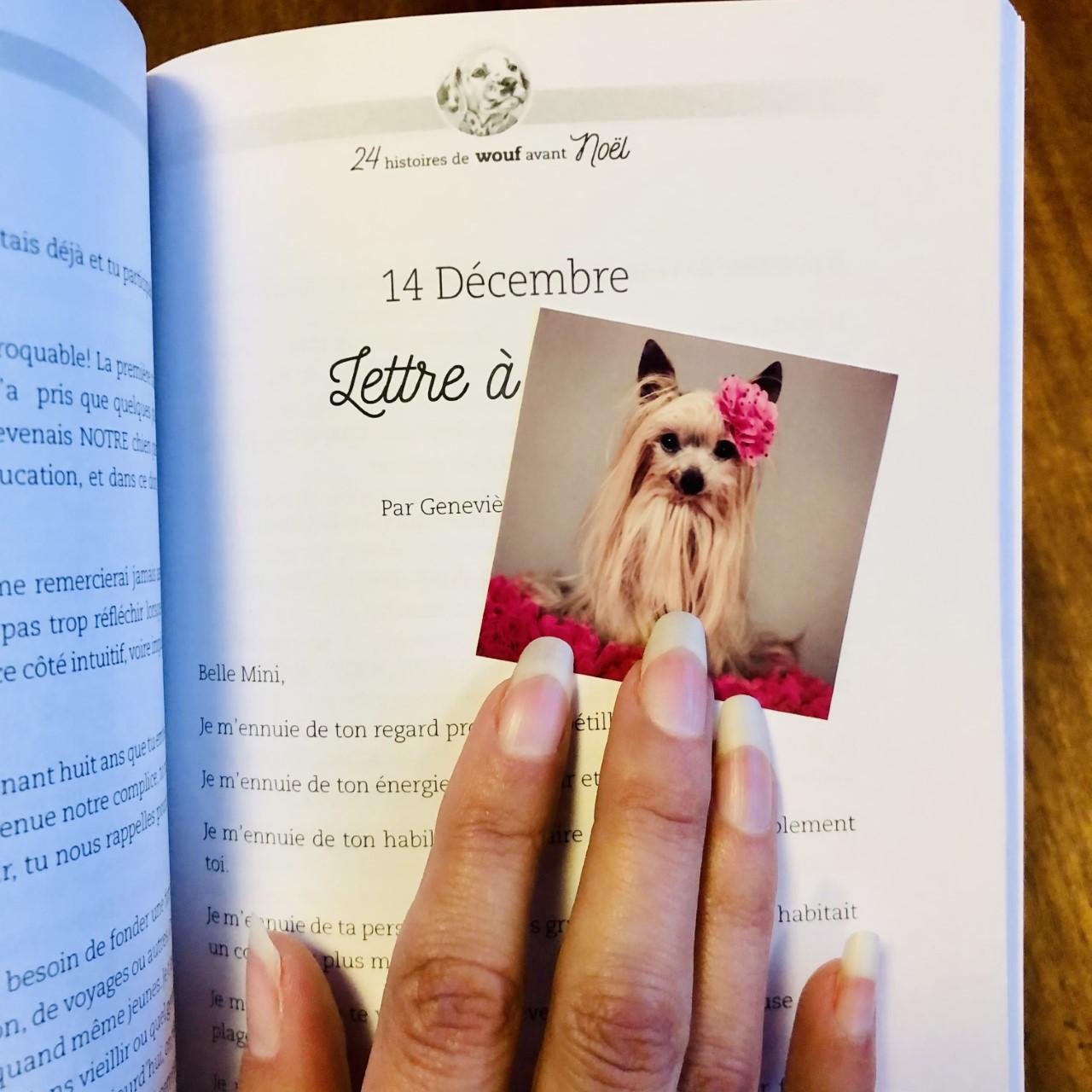 Page du livre et photo de yorkie