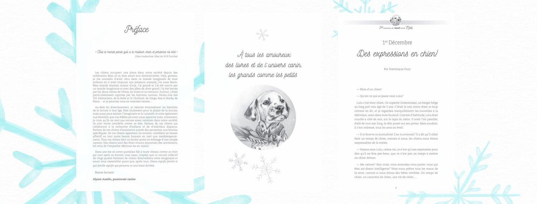 Exemples pages du livre