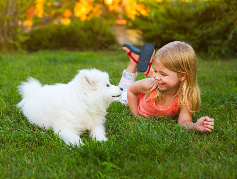 Enfant avec un chien dans le gazon. Traitement de pelouse sécuritaire pour la famille.