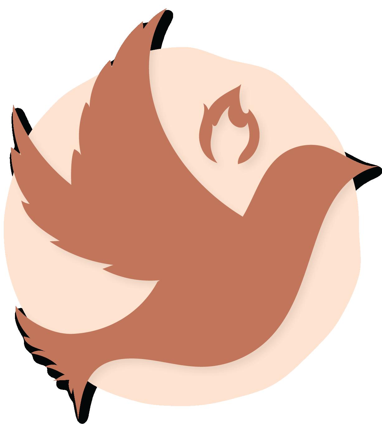 S.O.L Concepts Logo