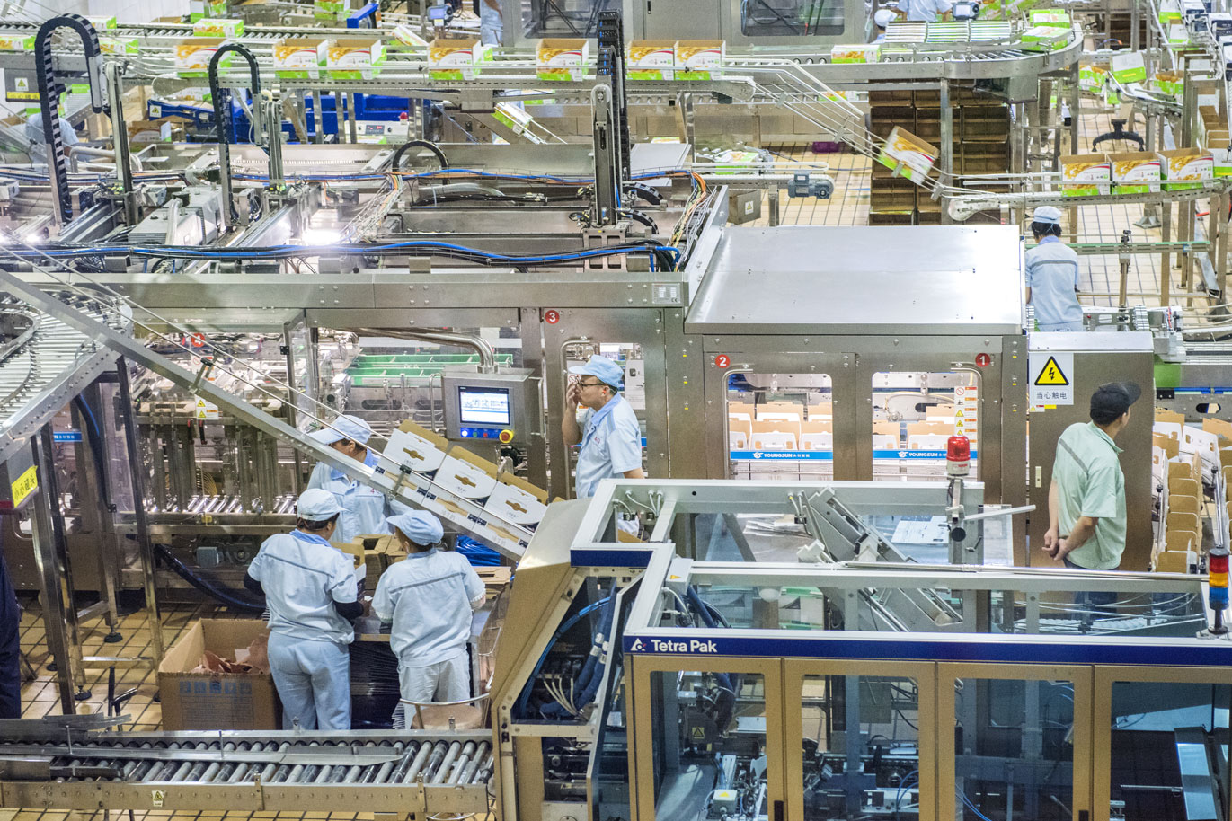 Overhead view of workers at a food processing plant