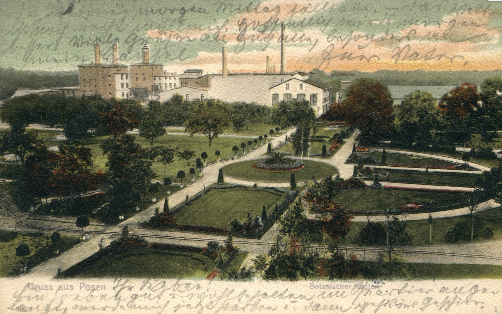 Park Wilsona Poznań - Garvest