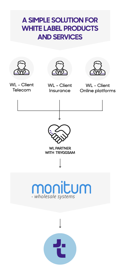How the Monitum CRM system works
