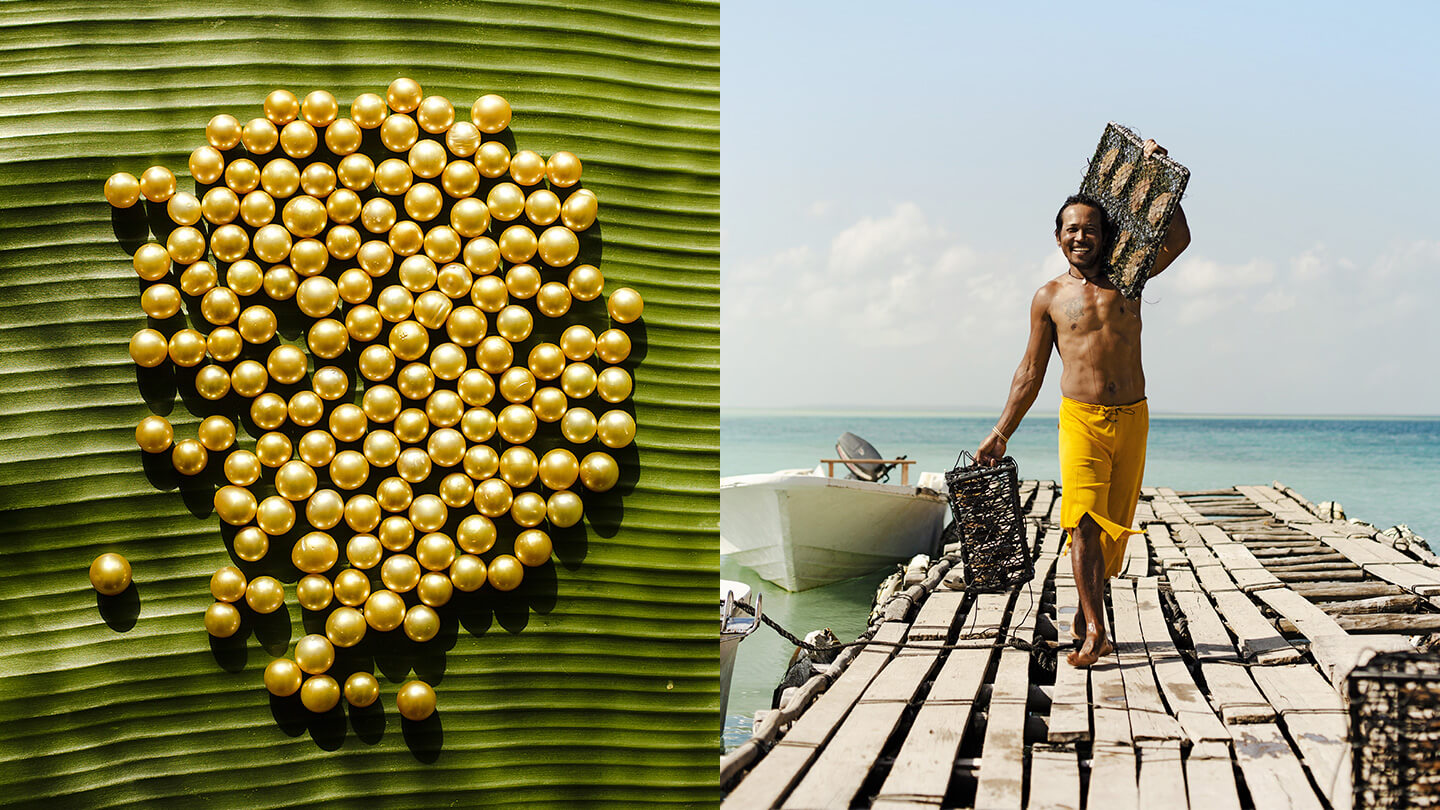 Treasure Island - Golden South Sea Pearls and the farmers who culture them