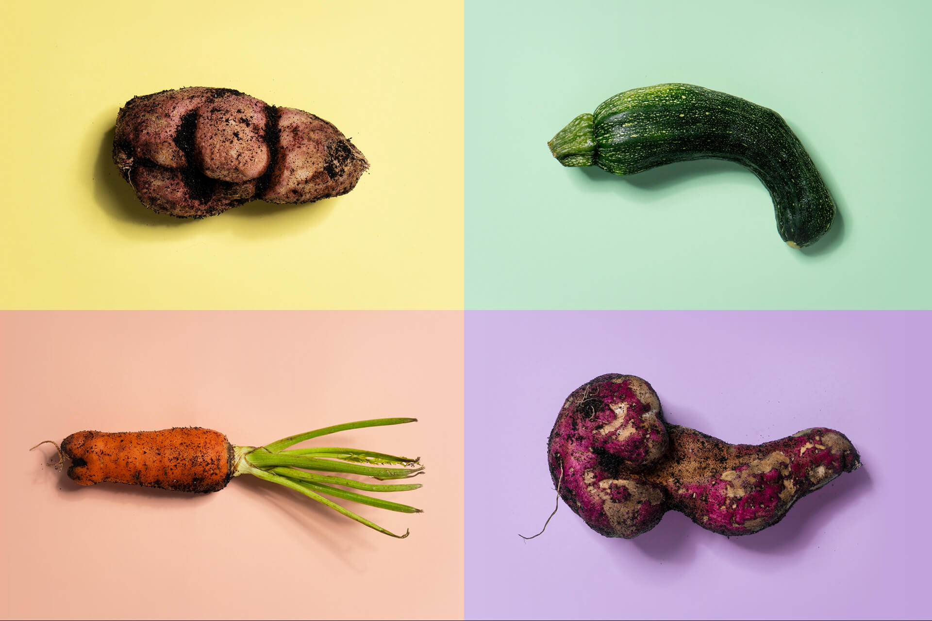Millions of pounds of food continue to go to waste, often due to their physical appearance. But why should looks be so important for food that's valued for its nutrition?