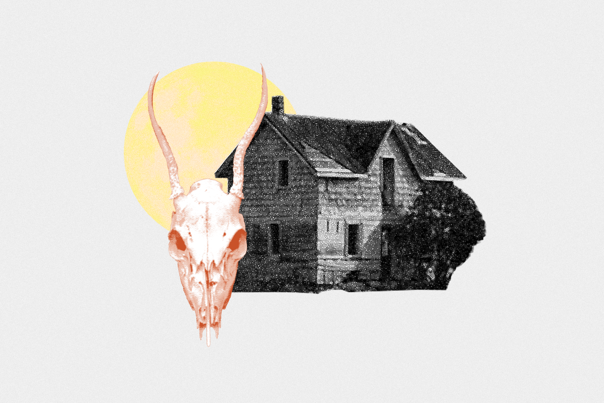 Collage of house and animal skull, illustration by Regine Salumbre