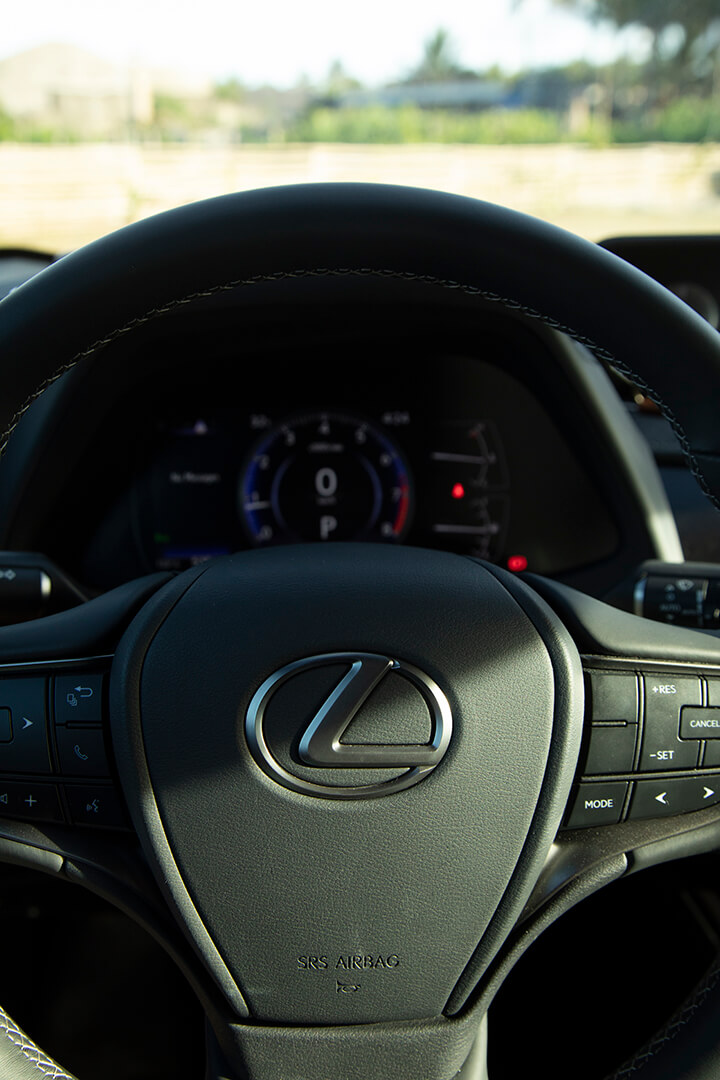 A closeup of the Lexus UX's steering wheel.